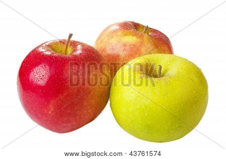 Three Apples Of A Last Year's Crop