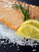 Photo of a cooked salmon steak with rosemary and lemon slices on a bed of sea salt. poster