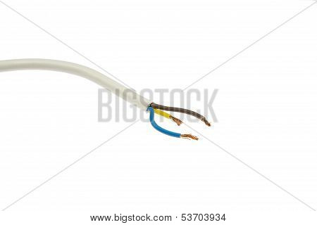 Cable With Single Lines