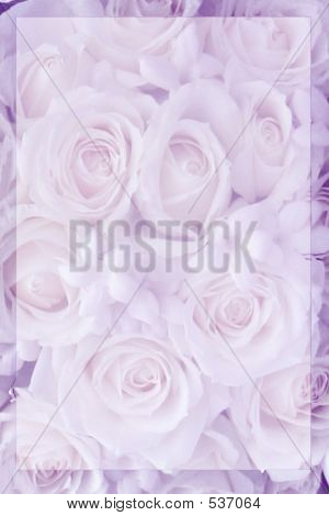 Light Lilac Rose Staitionary
