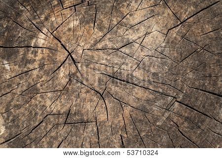 Old brown weathered wood, photo background texture poster