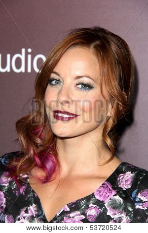 LOS ANGELES - NOV 6:  Amy Paffrath at the Hollywood Reporter's Next Gen 20th Anniversary Gala at Hammer Museum on November 6, 2013 in Westwood, CA