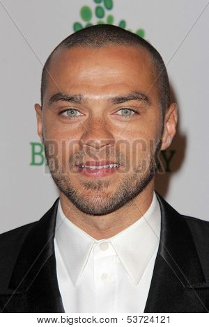 LOS ANGELES - NOV 9:  Jesse Williams at the Second Annual Baby2Baby Gala at Book Bindery on November 9, 2013 in Culver City, CA