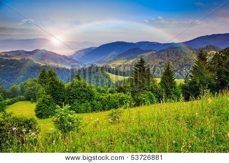 Pine Trees Near Valley In Mountains And Autumn Forest On Hillside Under Blue Sky With Clouds