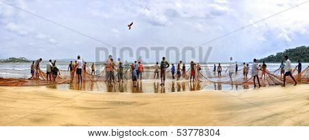 Goan people come together picking up a hugh fishing net