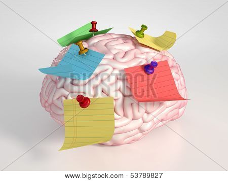 Brain And Stickers