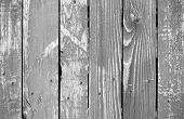 Texture of weathered gray wooden lining boards poster