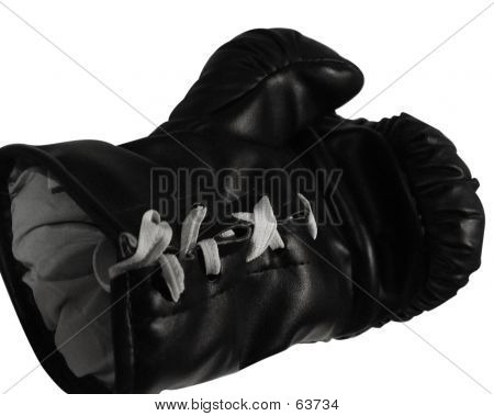 Box Glove Open Hand
