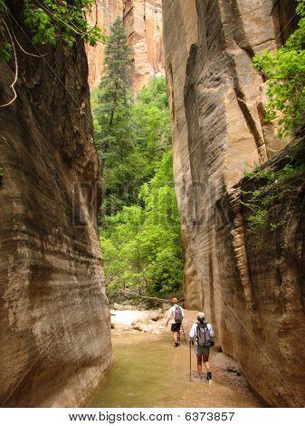 Zion Virgin Narrows Hikers
