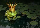 Frog prince concept with gold crown representing the fairy tale concept of change and transformation from an amphibian to royalty on a lily pad pond background. poster