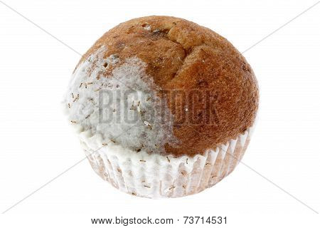 Mouldy Banana Muffin Cake With Swarming Ants Isolated On White Background.