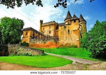 castles of France - Puymartin (Dordogne department)