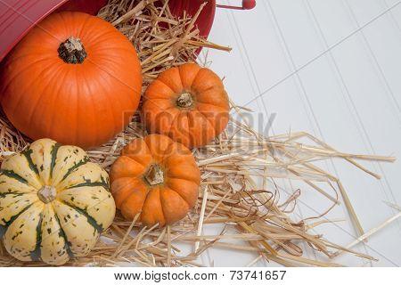 Fall Harveset In Straw On White