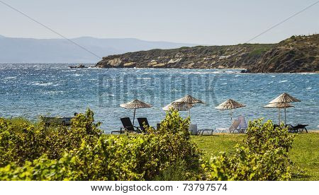 Beds And Straw Umbrellas On A Beach By Grape Vines At Bozcaada, Canakkale, Turkey