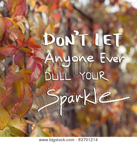 Inspirational Motivational Life Quote Phrase / Don't Let Anyone Ever Dull Your Sparkle poster