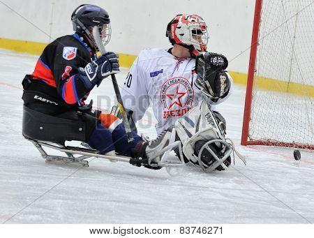 Sledge Hockey Goalkeeper And Striker