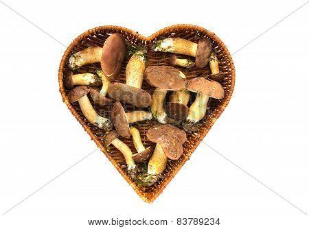 Mushrooms Fungi Cep Boletus Xerocomus Badius In Heart Form Basket Isolated
