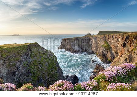 Cornish Clifftops