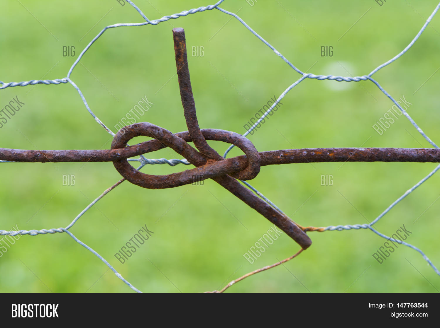 Abstract: Fence Wire Image & Photo (Free Trial) | Bigstock