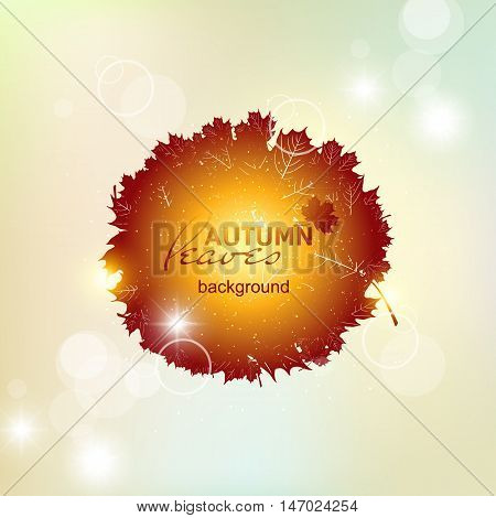 Autumn pattern with colorful translucent leaves. The circle of autumnal maple leaves gold.