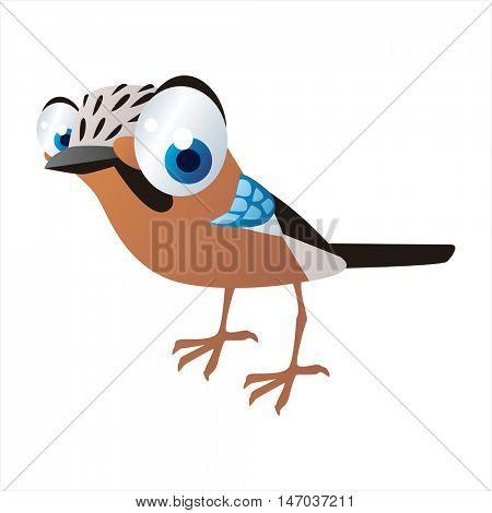 vector cool image of cartoon bright color animal. Funny cute birds. Jay