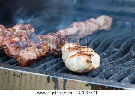 Juicy Hot Shish Kebab On The Grill