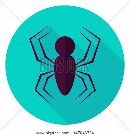 Spider Circle Icon. Flat Design Vector Illustration with Long Shadow. Scary Insect Symbol.