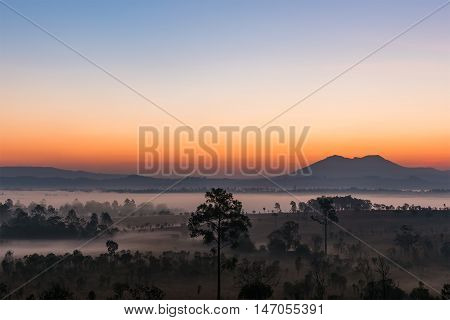 Sunrise above the mountain and misty forest on the morning. ThungSlangLuang Thailand