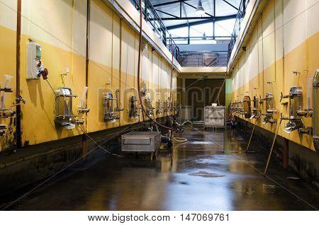 Stainless steel fermentation vessels in Bulgarian winery