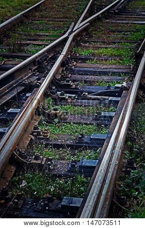 Railway junction. Railroad tracks in black background with grass.