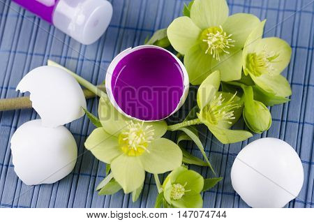 Colorful decoration for Easter with hellebore and egg shell with magenta tempera paint