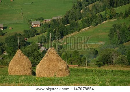 Haystacks on beautiful summer plateau in Carpathian mountain. view on summer rural landscape with haystacks near forest. Green valley.
