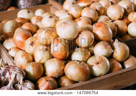 Close View Of Mature Bulb Onions Of New Crop Packed In Bulk In Wooden Box For Sale At Market Bazar.