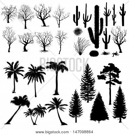 Vector Big Set of Trees and Plants Silhouettes. Cacti Tumbleweed Pine Tree Palm Tree Bare Tree.