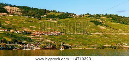Lavaux vineyards on Lake Geneva, Switzerland .