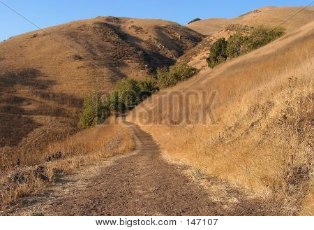 Country Trail1
