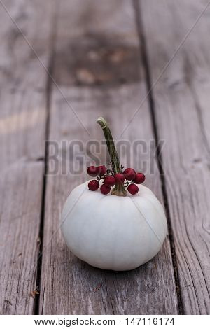 White Casper pumpkin with red berries on a rustic wood picnic table in fall.