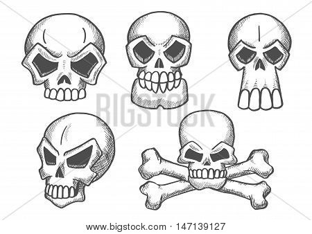 Skulls sketch icons. Skeleton craniums crossbones for halloween decoration, cartoon, label, tattoo