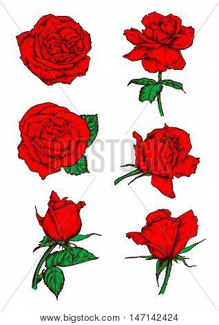 Red roses buds icons. Vector sketch botanical elements with stem and leaves. Scarlet rose flowers emblems for tattoo, icon, decoration