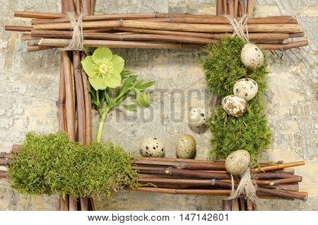 Easter frame with vintage background and quail boiled eggs and hellebore flower