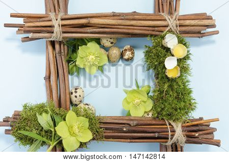 Easter frame with two raw and seven boiled quail eggs and one hellebore flower up