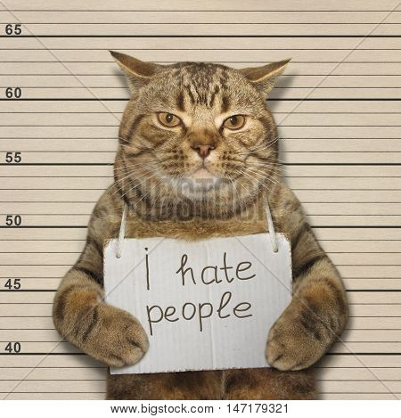 A cat hates people. It was arrested.