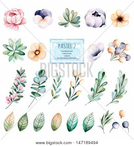Foral pastel collection with flower,roses,leaves,branches,succulents,eucalyptus leaves,pansy flower and more