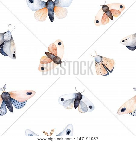 Butterflies and moths on white texture, handpainted watercolor seamless background.