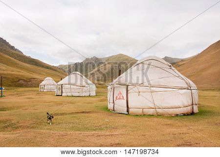 KYRGYZSTAN, CENTRAL ASIA - AUG 8, 2013: Tents Yurts - homes of the local nomadic asian people in a dry grass mountain valley on August 8, 2013. Kyrgyzstan's population is 5.2 million. The country is rural