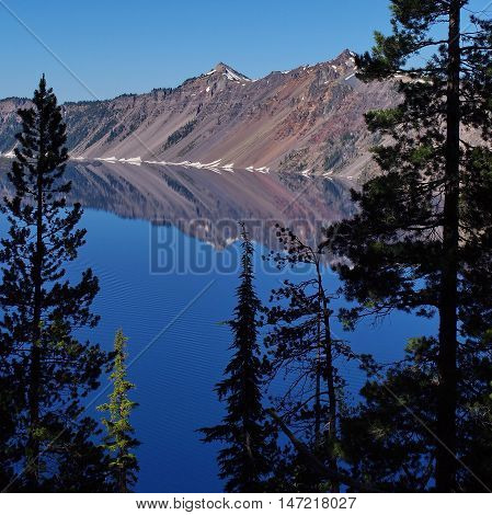 Part of the Crater of Crater Lake reflects in the lake and is framed by trees in the foreground on a sunny summer morning.