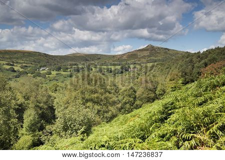 An image of the beautiful Dartmoor hills shot from Venford Brook towards Sharp Tor, Devon, England, UK.