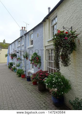 Floral houses pathway photographed at Tenby in Pembrokeshire