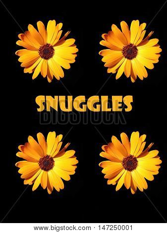 Abstract creative floral snuggles greeting card scene