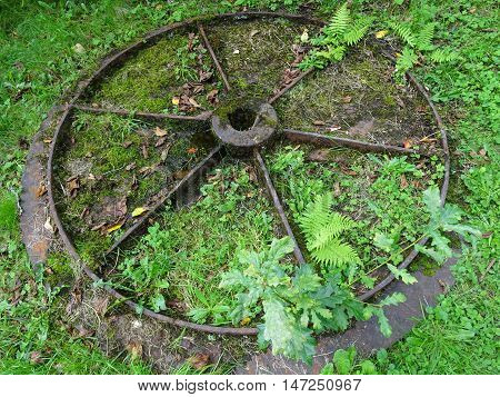 Antiquated iron wheel photographed at Colby Woodland Garden near Amroth in Pembrokeshire